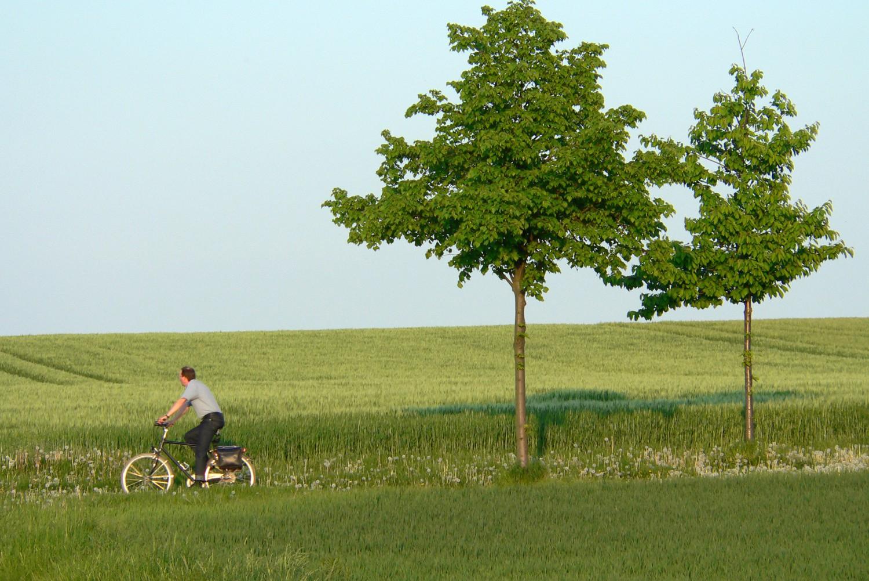Hintergrundinfos für die Umsetzung von Mobilitätslösungen im ländlichen Raum